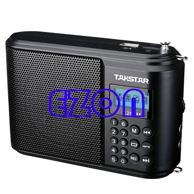 E250M Portable Digital Amplifier