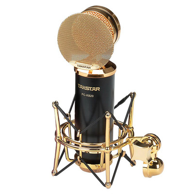 Large diaphragm recording microphone