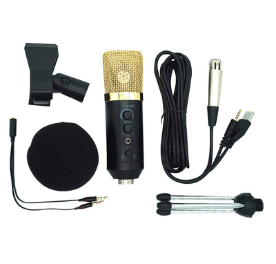 Mobile phone computer recording microphone
