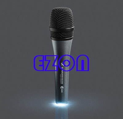 Performance Dynamic Wired Karaoke Microphone E845S